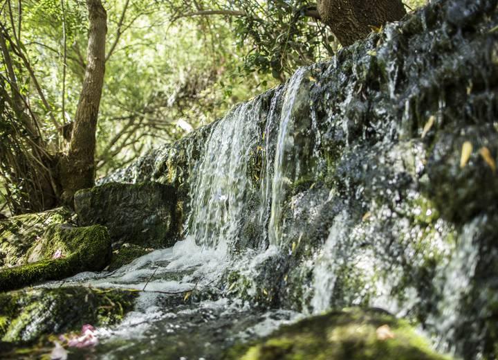 Pequena queda de água na floresta
